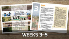 Thumbnail_weeks3-5-bigpic